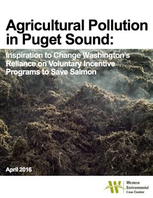 Agricultural Pollution in Puget Sound April 2016
