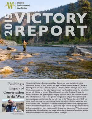 2015 Victory Report