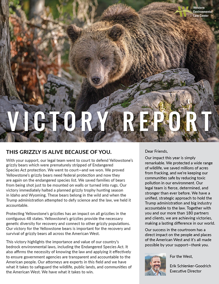 2018 Victory Report