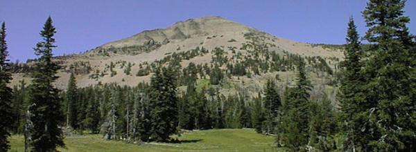 Malheur National Forest: Blue Mountains Forest Partners (OR)