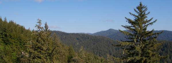 Defending Science-Based Forest Management in Oregon (OR)