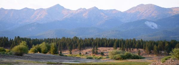 Forest Collaborative: Wallowa-Whitman National Forest (OR)