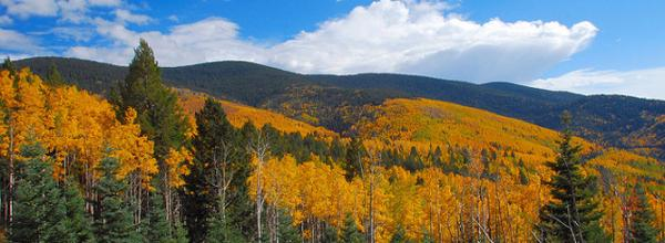 Protecting the Santa Fe National Forest from Fracking (NM)