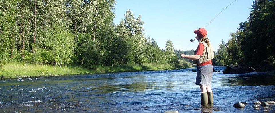 Protecting Wild Steelhead in the North and South Santiam Rivers