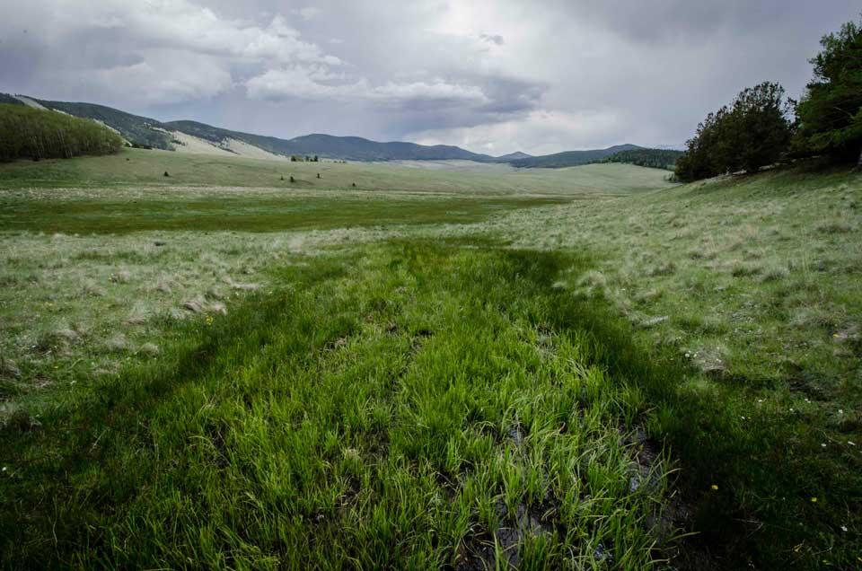 Valle Vidal Fertile Stripe