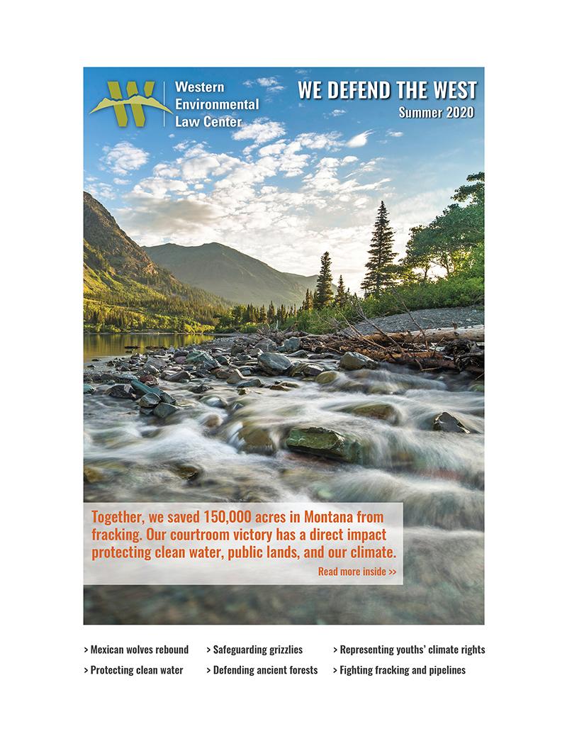 2020 Summer Newsletter